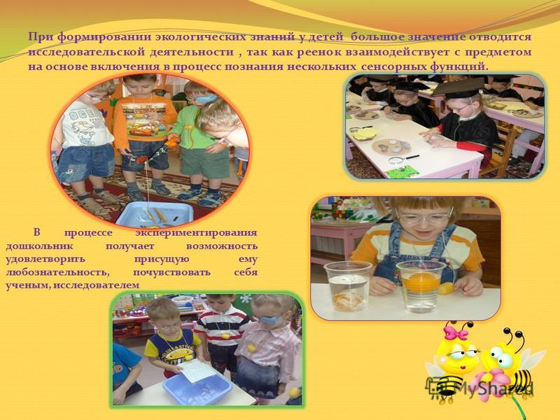 При формировании экологических знаний у детей большое значение отводится исследовательской деятельности, так как ребенок взаимодействует с предметом на основе включения в процесс познания нескольких сенсорных функций. В процессе экспериментирования д