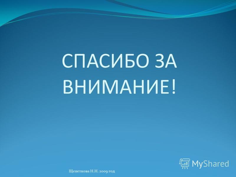 СПАСИБО ЗА ВНИМАНИЕ! Щепеткова Н.Н. 2009 год