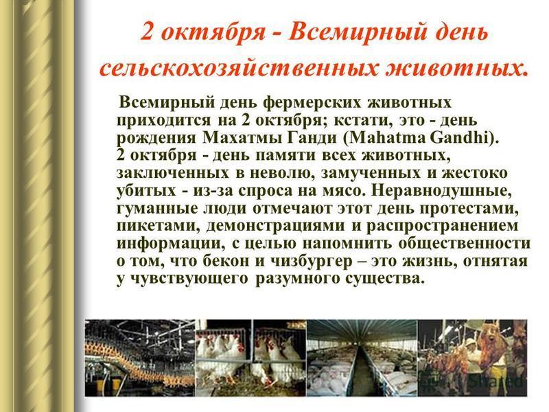2 октября - Всемирный день сельскохозяйственных животных. Всемирный день фермерских животных приходится на 2 октября; кстати, это - день рождения Махатмы Ганди (Mahatma Gandhi). 2 октября - день памяти всех животных, заключенных в неволю, замученных