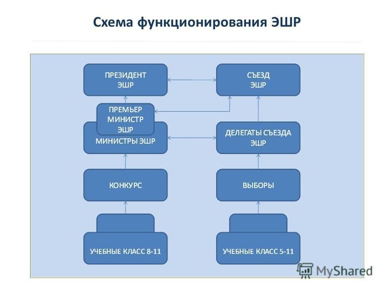 Схема функционирования ЭШР