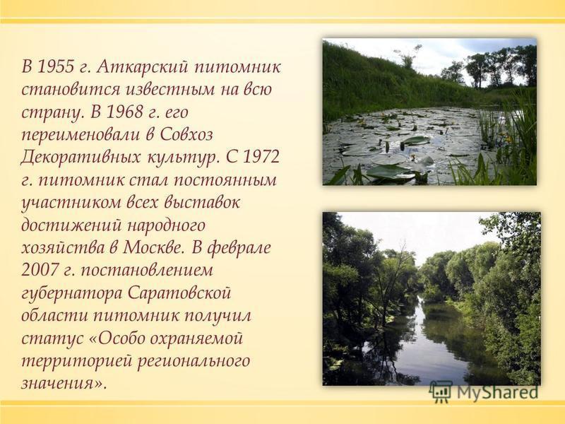 В 1955 г. Аткарский питомник становится известным на всю страну. В 1968 г. его переименовали в Совхоз Декоративных культур. С 1972 г. питомник стал постоянным участником всех выставок достижений народного хозяйства в Москве. В феврале 2007 г. постано