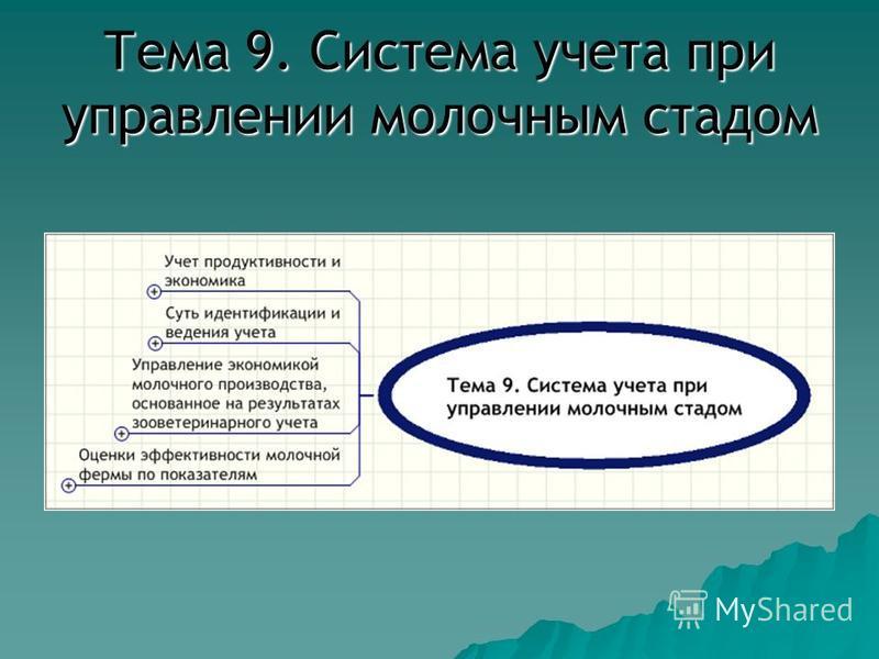 Тема 9. Система учета при управлении молочным стадом