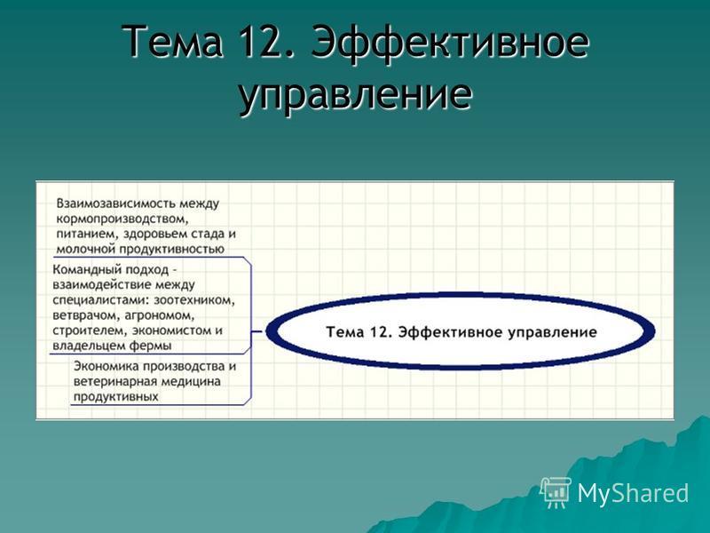 Тема 12. Эффективное управление