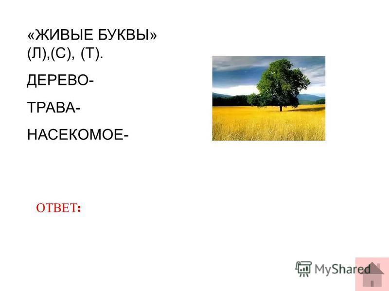 «ЖИВЫЕ БУКВЫ» (Л),(С), (Т). ДЕРЕВО- ТРАВА- НАСЕКОМОЕ- ОТВЕТ :