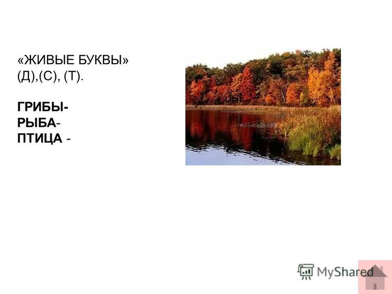 «ЖИВЫЕ БУКВЫ» (Д),(С), (Т). ГРИБЫ- РЫБА- ПТИЦА -