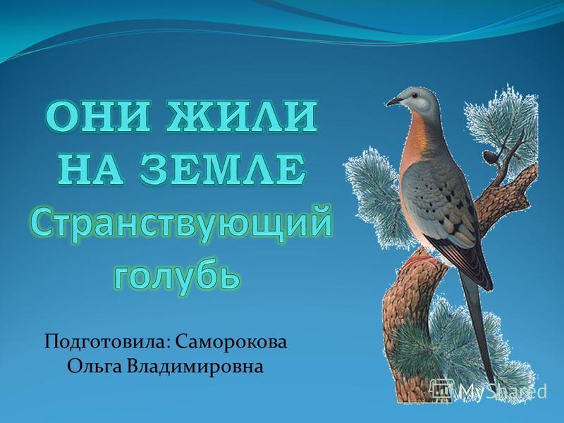 Подготовила: Саморокова Ольга Владимировна