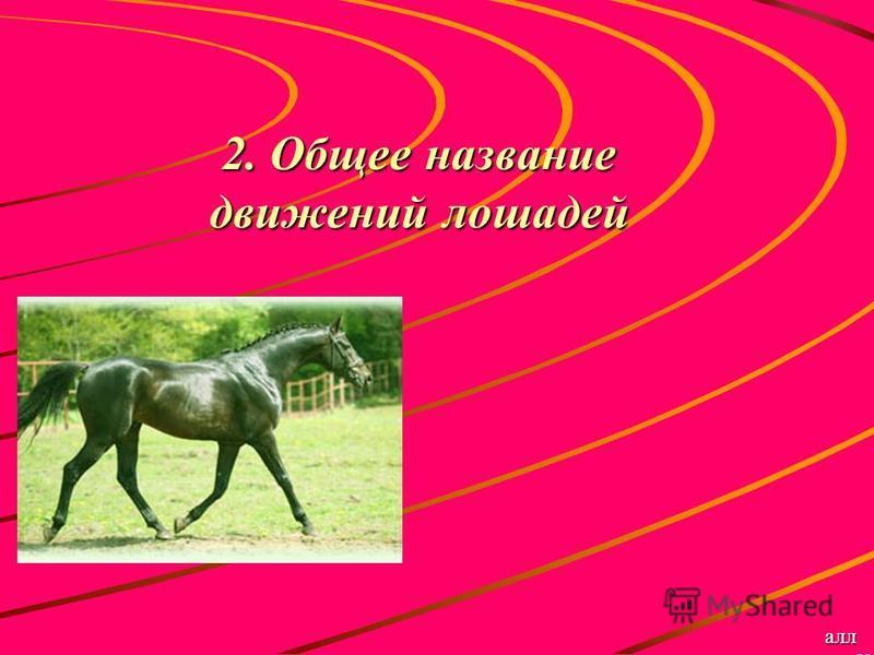 2. Общее название движений лошадей алл ю р