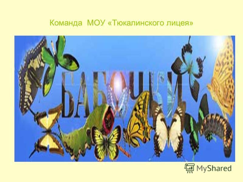 Команда МОУ «Тюкалинского лицея»
