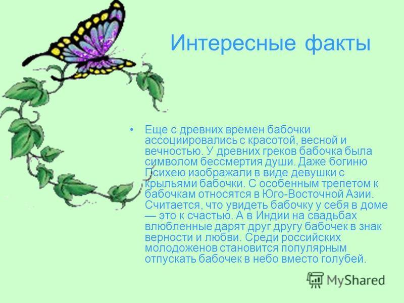 Интересные факты Еще с древних времен бабочки ассоциировались с красотой, весной и вечностью. У древних греков бабочка была символом бессмертия души. Даже богиню Психею изображали в виде девушки с крыльями бабочки. С особенным трепетом к бабочкам отн