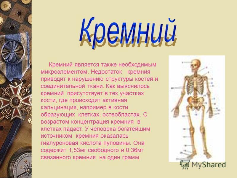 Кремний является также необходимым микроэлементом. Недостаток кремния приводит к нарушению структуры костей и соединительной ткани. Как выяснилось кремний присутствует в тех участках кости, где происходит активная кальцинация, например в кости образу