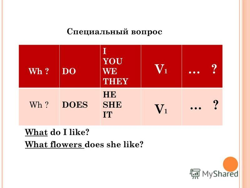 What do I like? What flowers does she like? Wh ?DO I YOU WE THEY V1V1 … ? Wh ? DOES HE SHE IT V1V1 … ? Специальный вопрос