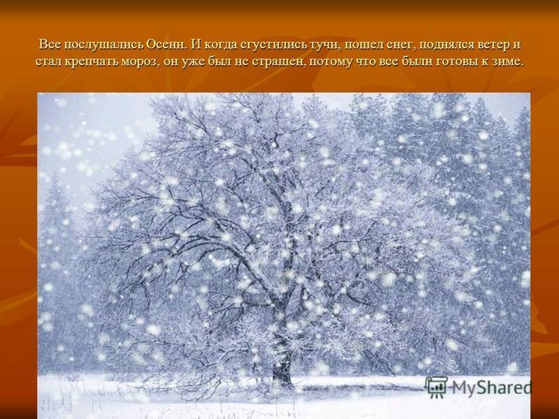 Все послушались Осени. И когда сгустились тучи, пошел снег, поднялся ветер и стал крепчать мороз, он уже был не страшен, потому что все были готовы к зиме.