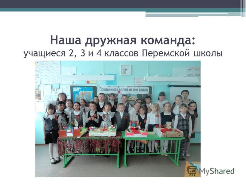 Наша дружная команда: учащиеся 2, 3 и 4 классов Перемской школы
