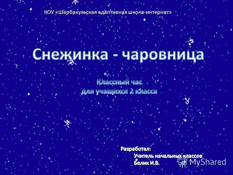 КОУ «Шербакульская адаптивная школа-интернат»
