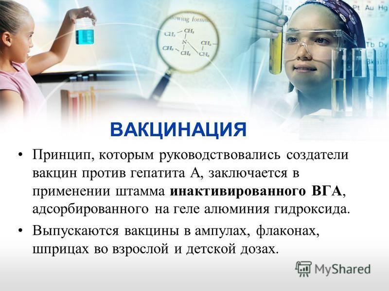 ВАКЦИНАЦИЯ Принцип, которым руководствовались создатели вакцин против гепатита А, заключается в применении штамма инактивированного ВГА, адсорбированного на геле алюминия гидроксида. Выпускаются вакцины в ампулах, флаконах, шприцах во взрослой и детс