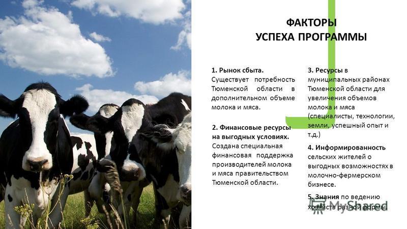 1. Рынок сбыта. Существует потребность Тюменской области в дополнительном объеме молока и мяса. 3. Ресурсы в муниципальных районах Тюменской области для увеличения объемов молока и мяса (специалисты, технологии, земли, успешный опыт и т.д.) 4. Информ