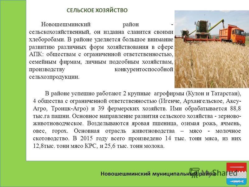 Новошешминский муниципальный район Новошешминский район - сельскохозяйственный, он издавна славится своими хлеборобами. В районе уделяется большое внимание развитию различных форм хозяйствования в сфере АПК: обществам с ограниченной ответственностью,