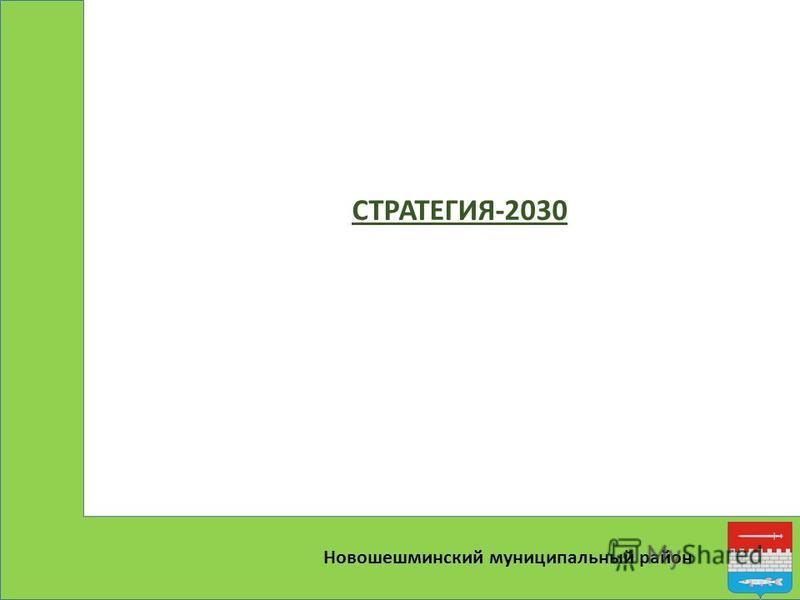 Новошешминский муниципальный район СТРАТЕГИЯ-2030