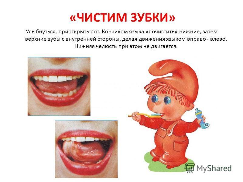 «ЧИСТИМ ЗУБКИ» Улыбнуться, приоткрыть рот. Кончиком языка «почистить» нижние, затем верхние зубы с внутренней стороны, делая движения языком вправо - влево. Нижняя челюсть при этом не двигается.