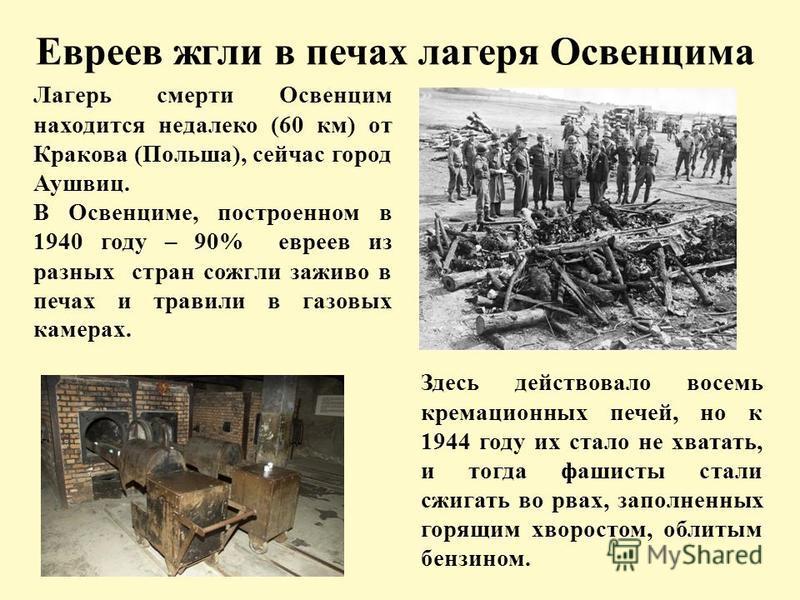 Евреев жгли в печах лагеря Освенцима Лагерь смерти Освенцим находится недалеко (60 км) от Кракова (Польша), сейчас город Аушвиц. В Освенциме, построенном в 1940 году – 90% евреев из разных стран сожгли заживо в печах и травили в газовых камерах. Здес