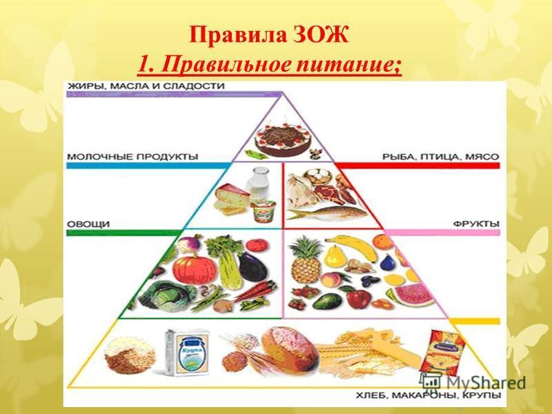 Правила ЗОЖ 1. Правильное питание;