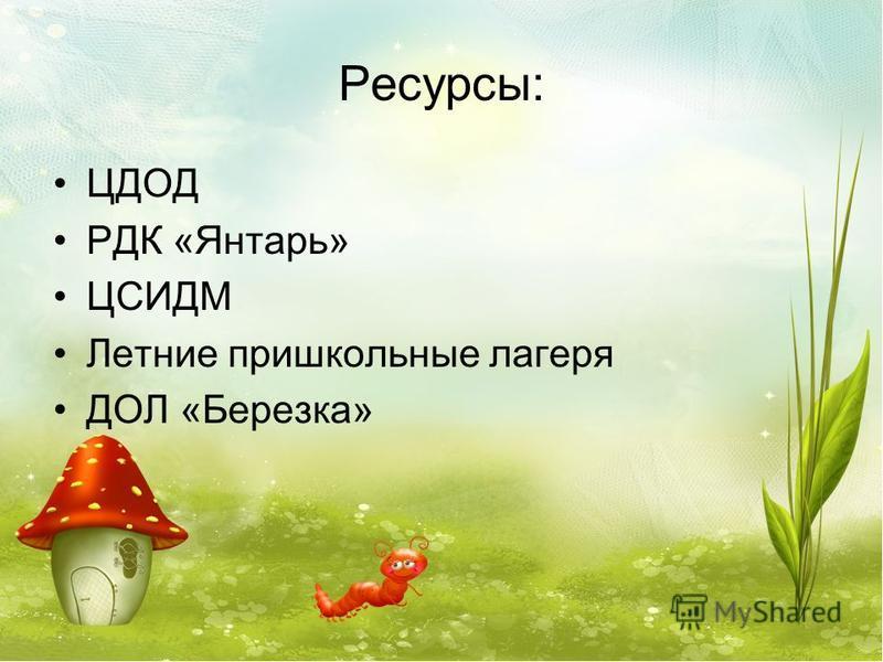 Ресурсы: ЦДОД РДК «Янтарь» ЦСИДМ Летние пришкольные лагеря ДОЛ «Березка»