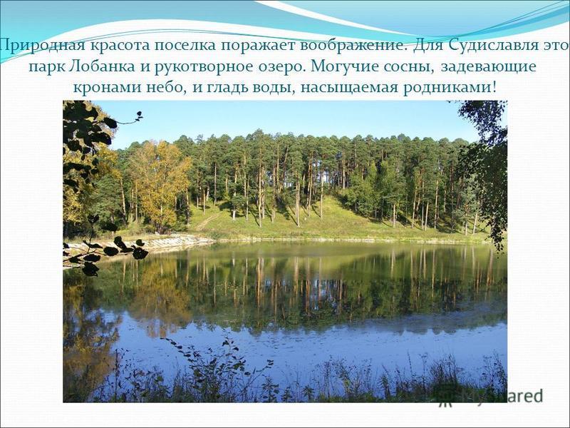 Природная красота поселка поражает воображение. Для Судиславля это парк Лобанка и рукотворное озеро. Могучие сосны, задевающие кронами небо, и гладь воды, насыщаемая родниками!