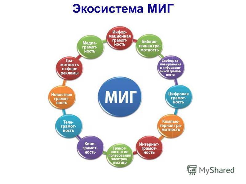Экосистема МИГ
