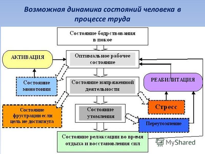 Возможная динамика состояний человека в процессе труда