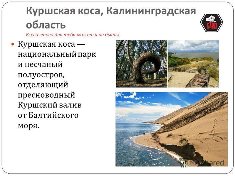 Столбы выветривания, Республика Коми Всего этого для тебя может и не быть ! Столбы выветривания, которые расположены на плато Мань - Пупу - Нер можно с уверенностью назвать визитной карточкой Урала. Сюда приезжают только самые отчаянные расстояние до