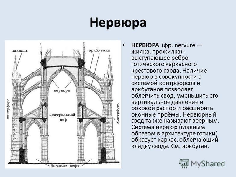 Нервюра НЕРВЮРА (фр. nervure жилка, прожилка) - выступающее ребро готического каркасного крестового свода. Наличие нервюр в совокупности с системой контрфор сов и аркбутанов позволяет облегчить свод, уменьшить его вертикальное давление и боковой расп