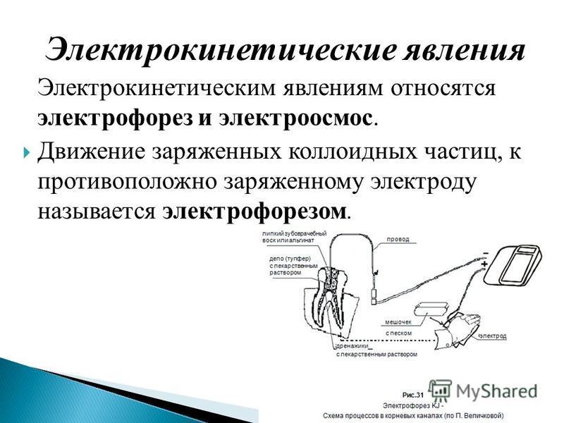 Электрокинетические явления Электрокинетическим явлениям относятся электрофорез и электроосмос. Движение заряженных коллоидных частиц, к противоположно заряженному электроду называется электрофорезом.