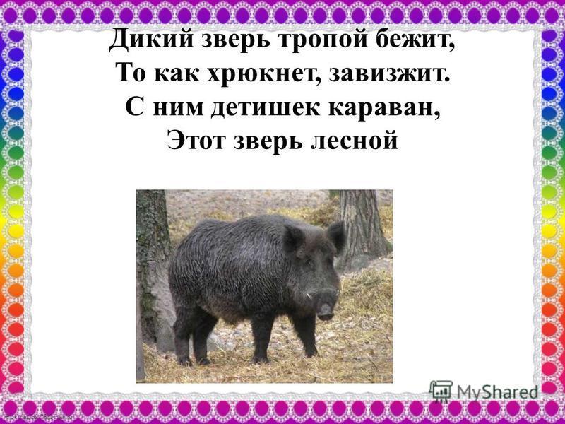FokinaLida.75@mail.ru Дикий зверь тропой бежит, То как хрюкнет, завизжит. С ним детишек караван, Этот зверь лесной
