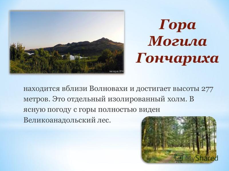 Гора Могила Гончариха находится вблизи Волновахи и достигает высоты 277 метров. Это отдельный изолированный холм. В ясную погоду с горы полностью виден Великоанадольский лес.