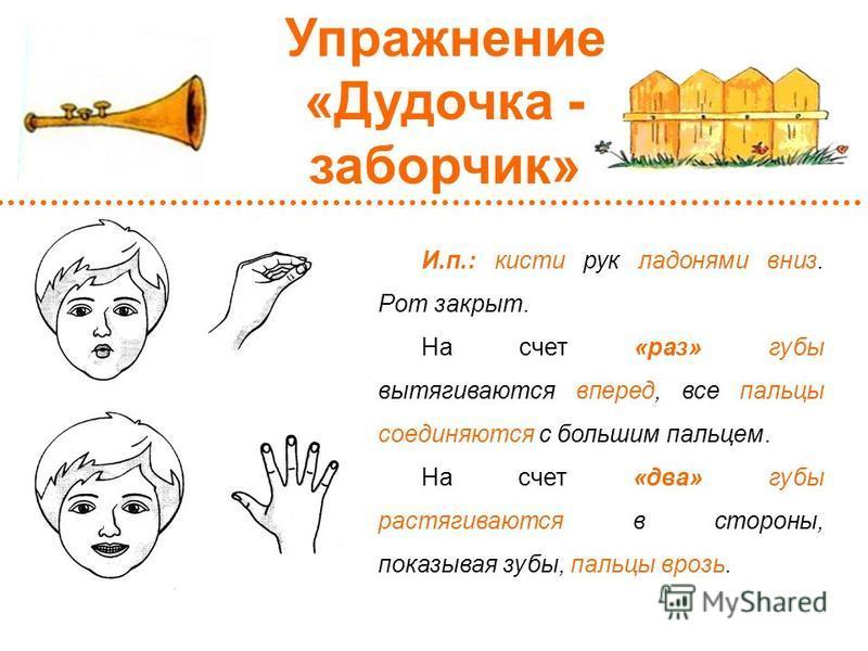 И.п.: кисти рук ладонями вниз. Рот закрыт. На счет «раз» губы вытягиваются вперед, все пальцы соединяются с большим пальцем. На счет «два» губы растягиваются в стороны, показывая зубы, пальцы врозь. Упражнение «Дудочка - заборчик»