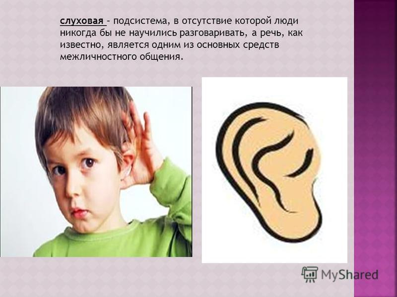 слуховая – подсистема, в отсутствие которой люди никогда бы не научились разговаривать, а речь, как известно, является одним из основных средств межличностного общения.
