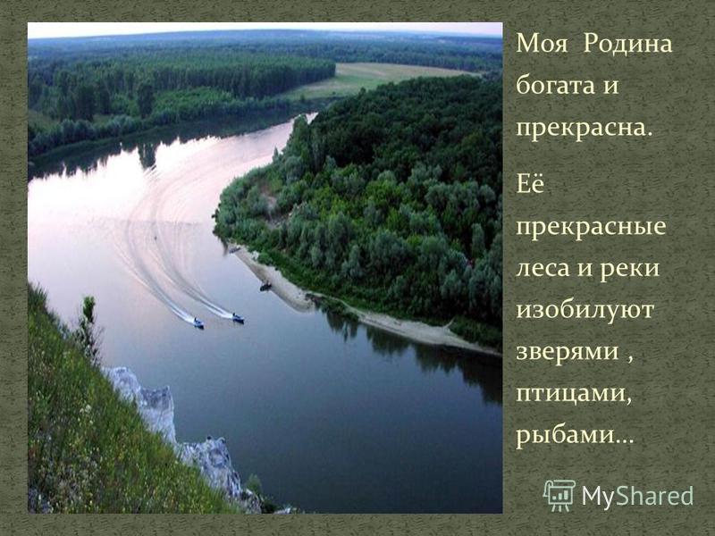 Моя Родина богата и прекрасна. Её прекрасные леса и реки изобилуют зверями, птицами, рыбами…