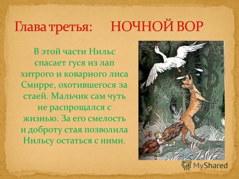 В этой части Нильс спасает гуся из лап хитрого и коварного лиса Смирре, охотившегося за стаей. Мальчик сам чуть не распрощался с жизнью. За его смелость и доброту стая позволила Нильсу остаться с ними.
