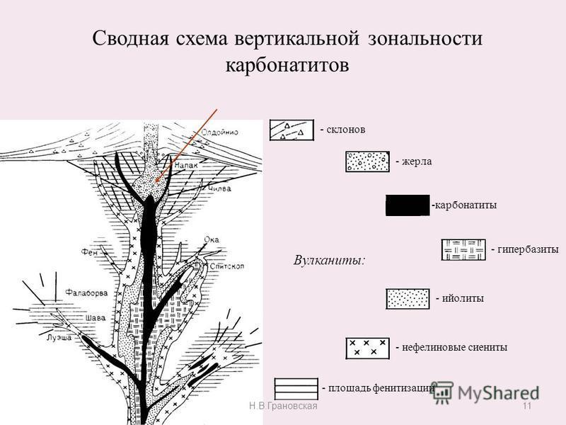 11 Сводная схема вертикальной зональности карбонатитов - склонов - жерла -карбонатиты - гипербазиты - ийолиты - нефелиновые сиениты Вулканиты: - площадь фенитизации Н.В.Грановская
