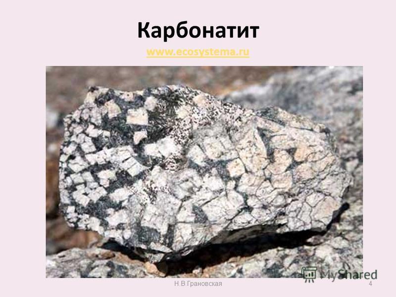 Карбонатит www.ecosystema.ru www.ecosystema.ru Н.В.Грановская 4
