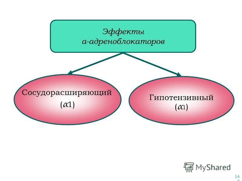 142 Эффекты α-адреноблокаторов Сосудорасширяющий ( α 1) Гипотензивный ( α 1 )