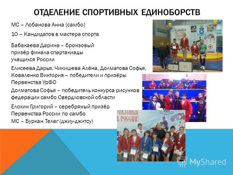 Диета Волкова: описание, меню, отзывы и результаты