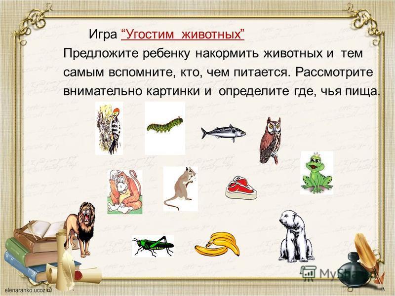 Игра Угостим животных Угостим животных Предложите ребенку накормить животных и тем самым вспомните, кто, чем питается. Рассмотрите внимательно картинки и определите где, чья пища.