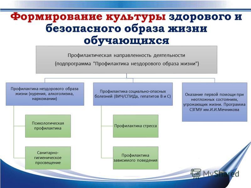 Формирование культуры здорового и безопасного образа жизни обучающихся Профилактическая направленность деятельности (подпрограмма