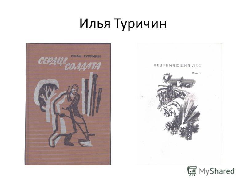 Илья Туричин