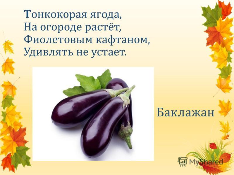 Тонкокорая ягода, На огороде растёт, Фиолетовым кафтаном, Удивлять не устает. Баклажан