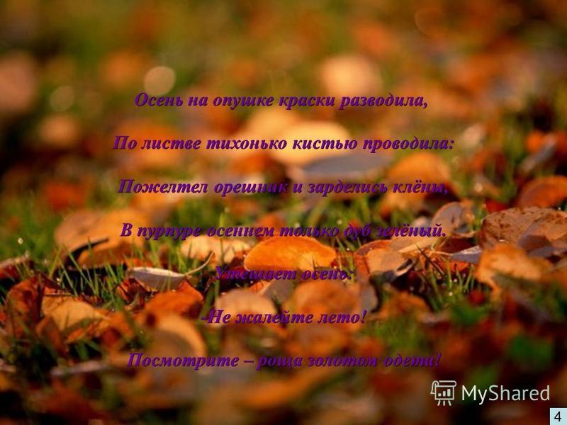 4 ! Осень на опушке краски разводила, По листве тихонько кистью проводила: По листве тихонько кистью проводила: Пожелтел орешник и зарделись клёны, Пожелтел орешник и зарделись клёны, В пурпуре осеннем только дуб зелёный. В пурпуре осеннем только дуб