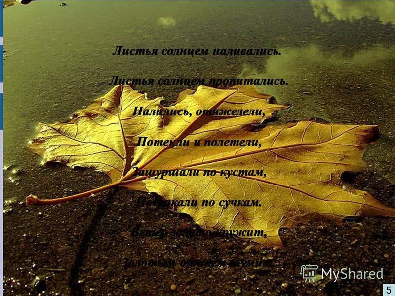 5 Листья солнцем наливались. Листья солнцем пропитались. Листья солнцем пропитались. Налились, отяжелели, Налились, отяжелели, Потекли и полетели, Потекли и полетели, Зашуршали по кустам, Зашуршали по кустам, Поскакали по сучкам. Поскакали по сучкам.