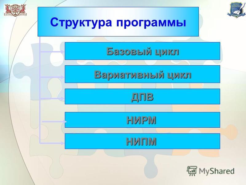 Базовый цикл Вариативный цикл ДПВ НИРМ Структура программы НИПМ