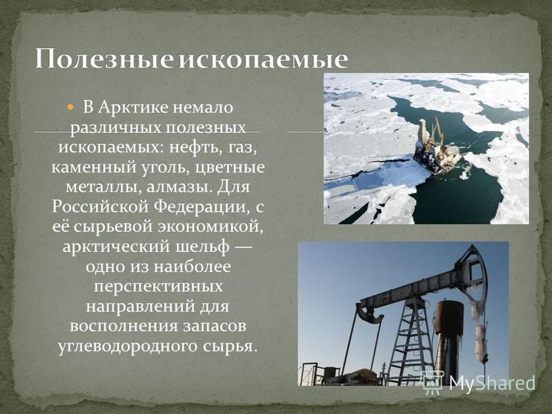 В Арктике немало различных полезных ископаемых: нефть, газ, каменный уголь, цветные металлы, алмазы. Для Российской Федерации, с её сырьевой экономикой, арктический шельф одно из наиболее перспективных направлений для восполнения запасов углеводородн
